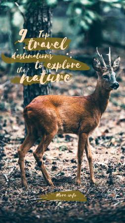 Designvorlage Wild deer in habitat für Instagram Story
