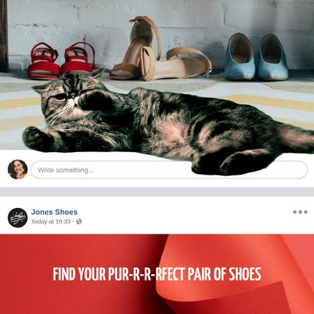 Fashion Sale Cat with Stylish Shoes Animated Post Tasarım Şablonu