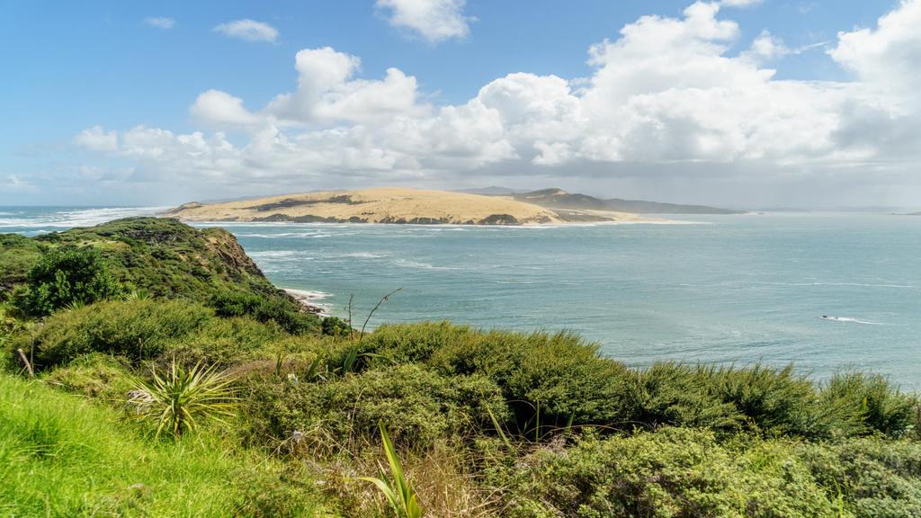 Beautiful landscape of tropical Forest and Ocean — Modelo de projeto