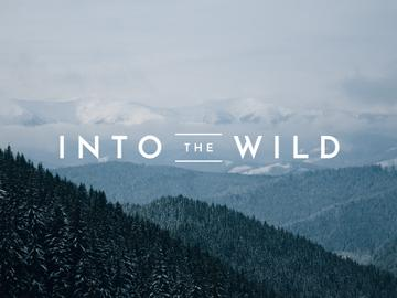 Into the world banner