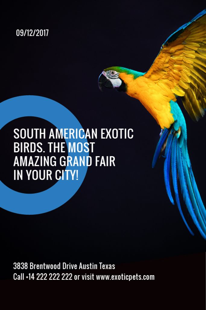 Exotic Birds Shop Ad Flying Parrot — Crear un diseño