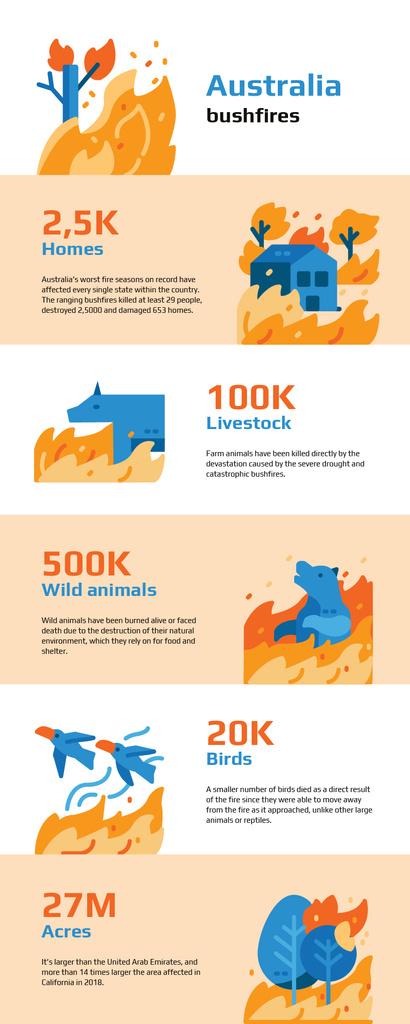 Statistical infographics about Australia bushfires — Create a Design