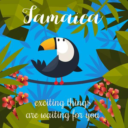 Toucan on liana in Tropical Forest Animated Post – шаблон для дизайна