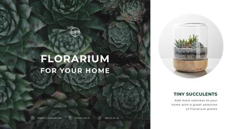 Plantilla de diseño de Floral Shop Ad Succulent Plants in Green Full HD video