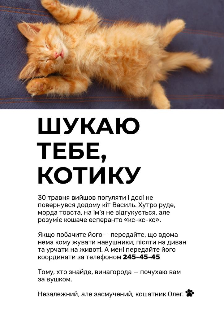 Cute Red Fluffy Kitten Sleeping Poster — Créer un visuel
