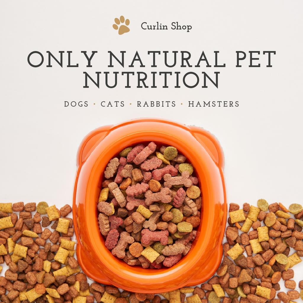 Pet Food and Supplements Offer — Створити дизайн