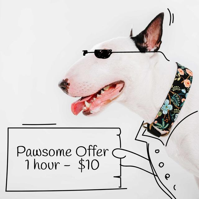 Dog Walking services offer with Funny bull terrier Instagram AD Modelo de Design