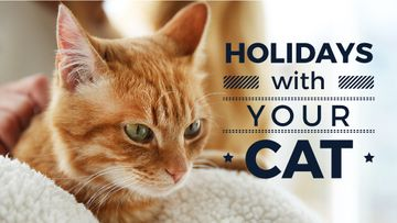 Holidays with your cat poster and red cat