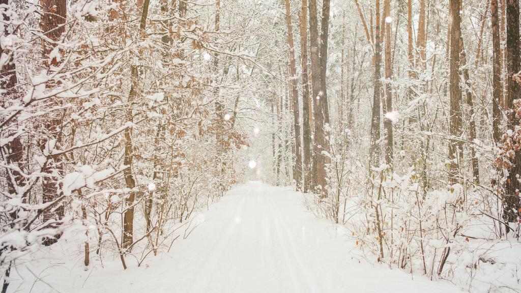 Charming snowy Forest — Maak een ontwerp