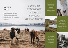 Iceland Tours Offer with Mountains and Horses