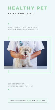 Template di design Vet Clinic Ad Doctor Holding Dog Graphic
