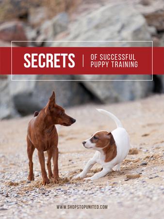 Pets Behavior Two Dogs on a Walk Poster US Modelo de Design