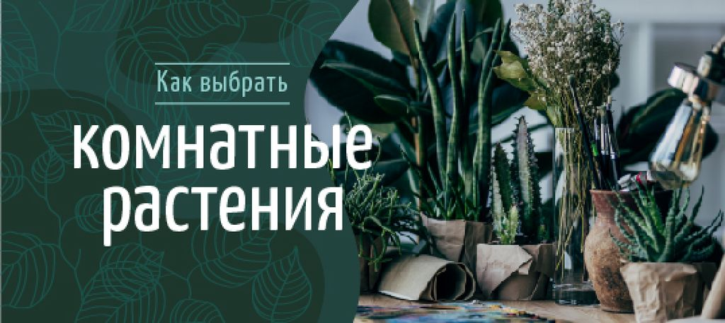 Green Houseplants in Pots — Створити дизайн