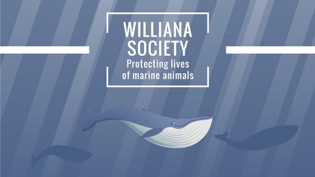 Plantilla de diseño de Marine Life Society Whales Swimming Underwater Full HD video