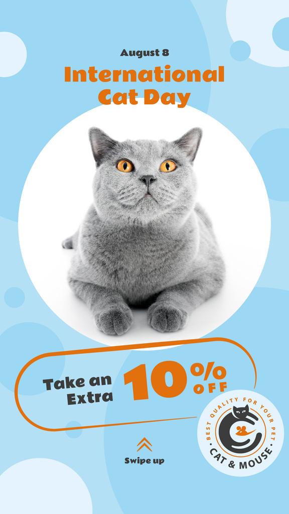 Cat Day Sale Cute Grey Shorthair Cat Instagram Story – шаблон для дизайну