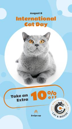 Template di design Cat Day Sale Cute Grey Shorthair Cat Instagram Story