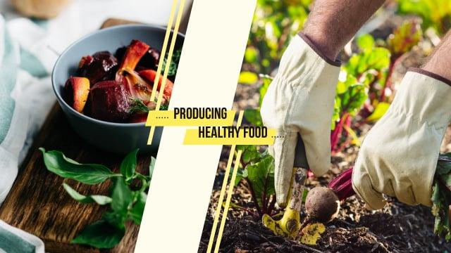 Plantilla de diseño de Farmer harvesting beetroots Youtube