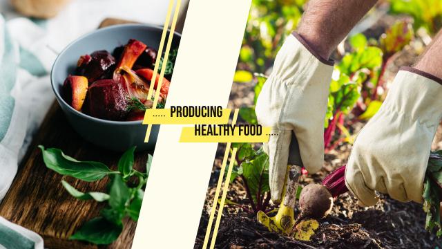 Farmer harvesting beetroots Youtube Modelo de Design