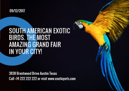 Template di design Exotic Birds fair Blue Macaw Parrot Postcard