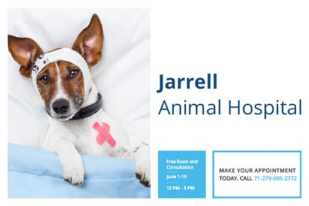 Dog in Animal Hospital Gift Certificate Modelo de Design
