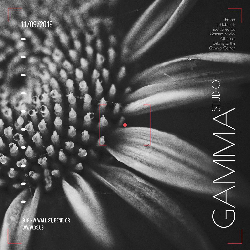 Studio Exhibition announcement on Blooming Daisy Flower — Create a Design