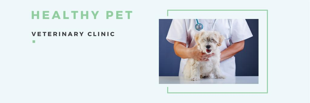 Healthy pet veterinary clinic — Maak een ontwerp