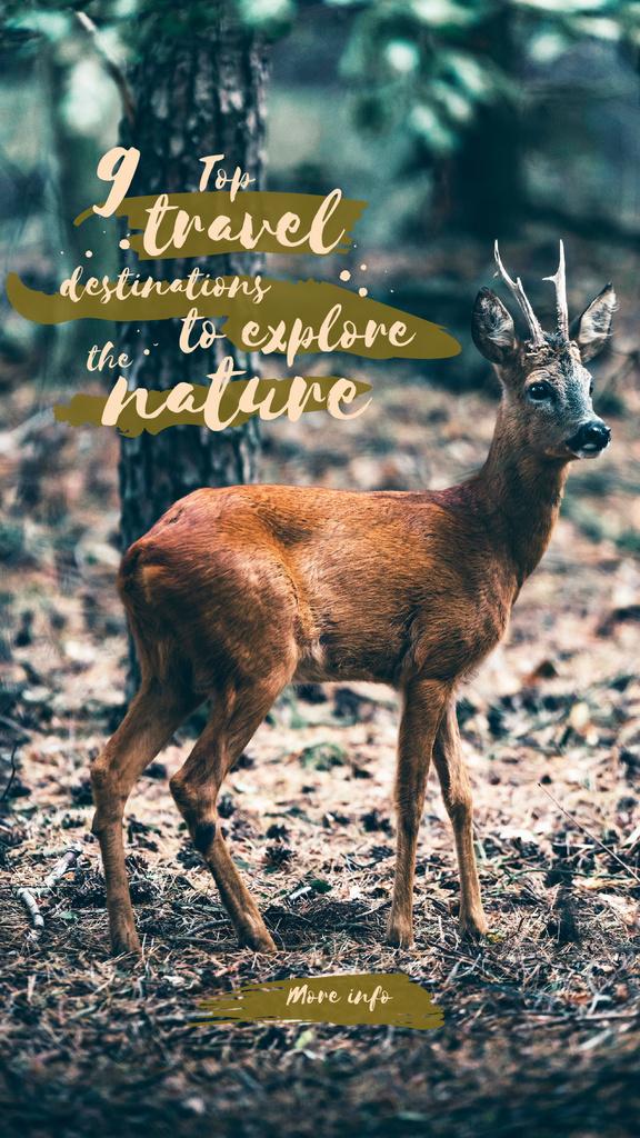 Wild deer in habitat — Create a Design