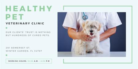 Vet Clinic Ad Doctor Holding Dog Image Modelo de Design