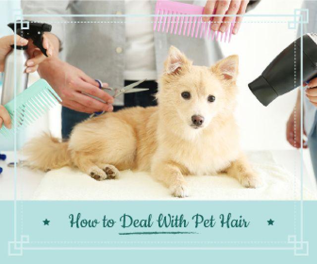 Plantilla de diseño de pet hair salon poster  Large Rectangle