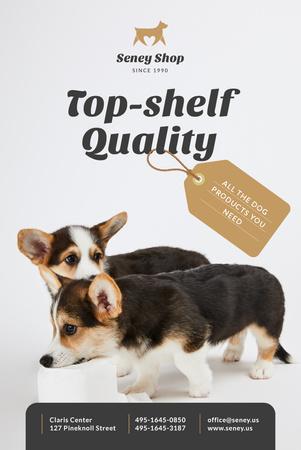 Dog Food Ad with Cute Corgi Puppies Pinterest Modelo de Design