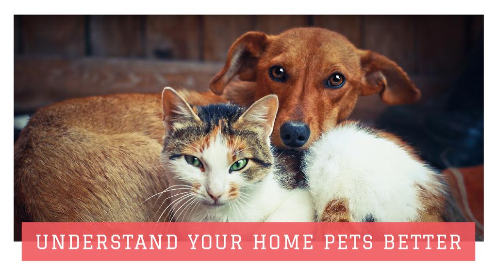 Pets Behavior Cute Dog and Cat — Modelo de projeto