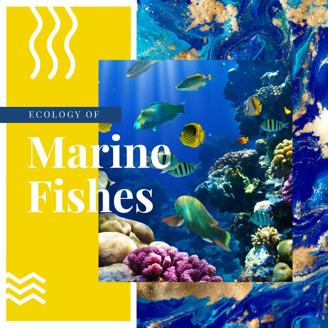 Fish swimming in sea Instagramデザインテンプレート