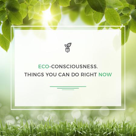 Eco-consciousness Concept Instagram – шаблон для дизайну