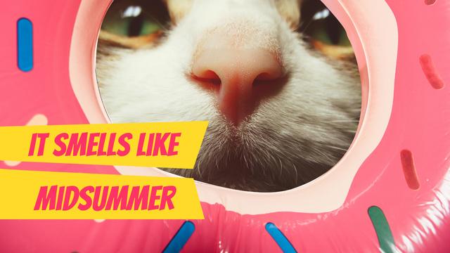 Modèle de visuel Funny Kitty sniffing Donut - Youtube Thumbnail