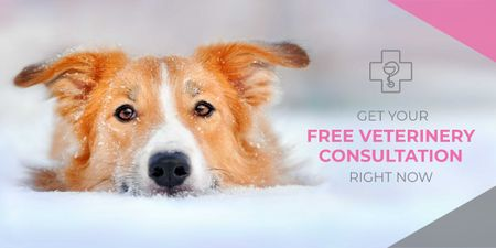 Template di design Free veterinary consultation banner Image