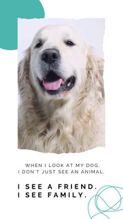 Ontwerpsjabloon van Instagram Video Story van Pets Adoption Motivation with Cute Dog