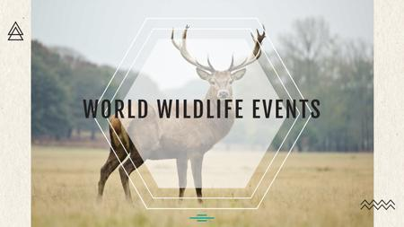 Ontwerpsjabloon van Youtube van World wildlife events Announcement