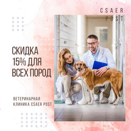 Vet taking care of Dog in Clinic Instagram AD – шаблон для дизайна