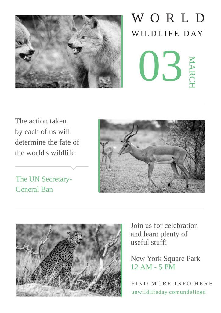 World wildlife day with Wild Animals — Create a Design