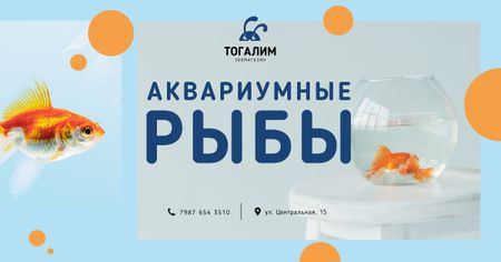Pet Shop Ad Fish Swimming in Aquarium Facebook AD – шаблон для дизайна