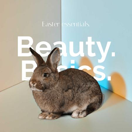 Beauty Easter Offer with Rabbit Animated Postデザインテンプレート