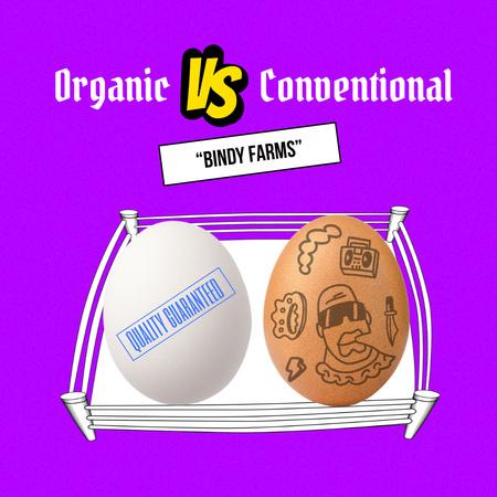 Modèle de visuel Organic Farm Food Offer with Different Eggs - Instagram