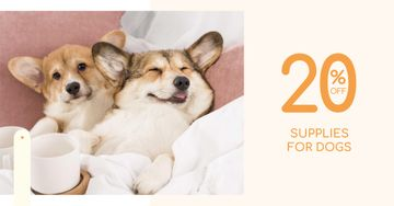 Supplies for Dogs Discount Offer with Cute Corgi