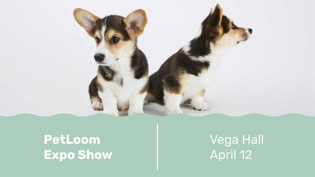 Plantilla de diseño de Dog show with cute Corgi Puppies FB event cover