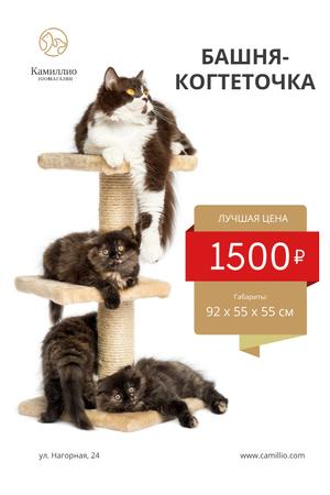 Pet Shop Offer with Cats Resting on Tower Pinterest – шаблон для дизайна