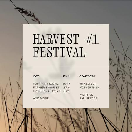 Autumn Harvest Festival Announcement Animated Post – шаблон для дизайна