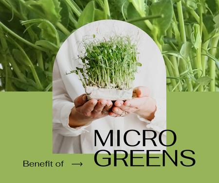Woman holding Micro Greens Facebook Modelo de Design