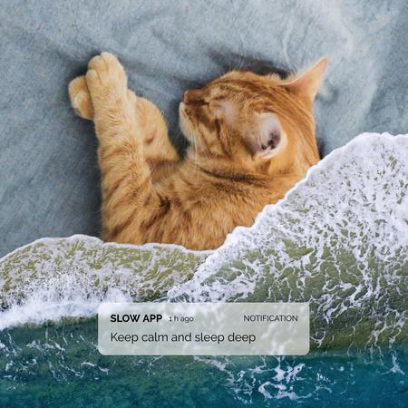 Cute Cat sleeping under Ocean Waves Blanket Instagram – шаблон для дизайну