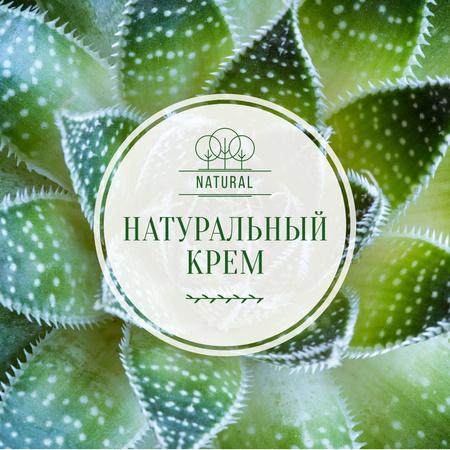 Organic Cream ad on green plant Instagram AD – шаблон для дизайна