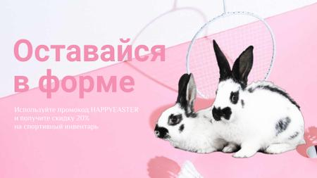 Special Easter Fitness Offer with Rabbits Full HD video – шаблон для дизайна